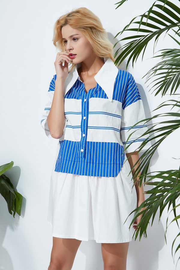 Willow Striped Tunic Dress (Blue Striped)